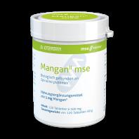 ManganII mse